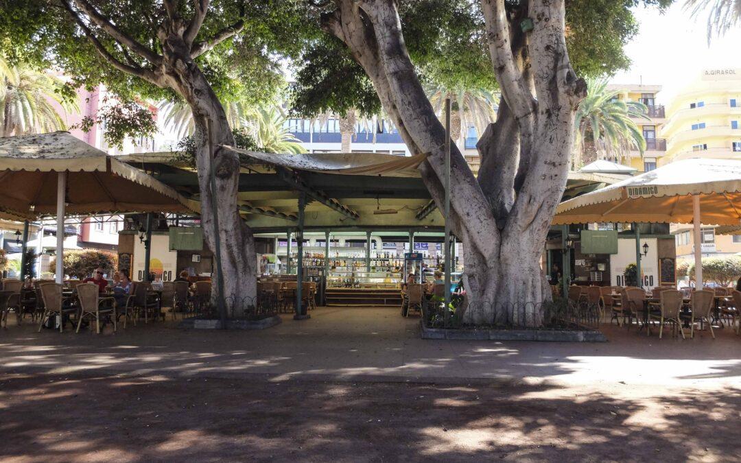 El Ayuntamiento portuense saca a licitación el Bar-Cafetería 'El Dinámico'