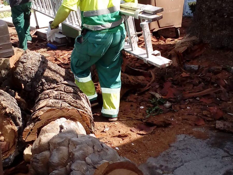 Obras de mejora del cementerio municipal de San Carlos y horario especial para Todos los Santos