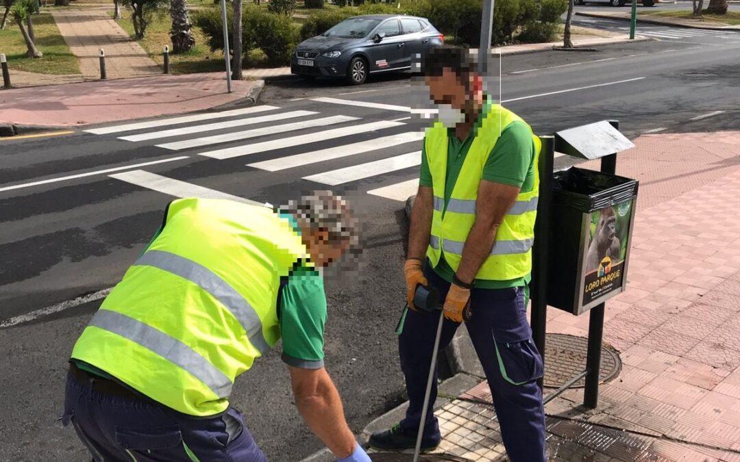 El Ayuntamiento del Puerto de la Cruz continúa las labores de desinsectación y desratización del municipio